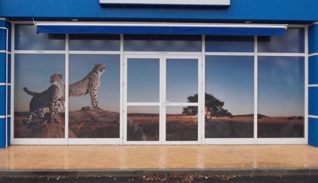 Marquage publicitaire avec impression numérique HD sur microperforé. Décoration de vitrines. Signarama Montpellier.